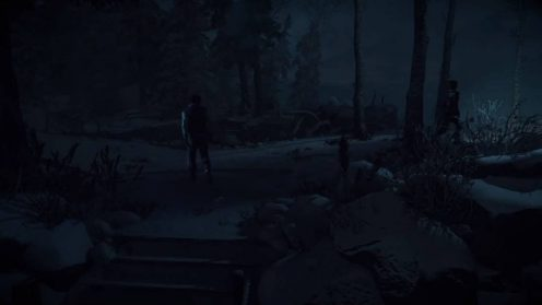 Улика 10 в Until Dawn