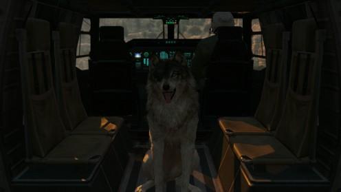 D-dog-Гайд-как использовать-mgsv