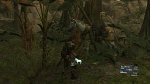 Что может D-Horse.