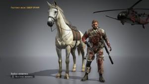 Лошадь без униформы.