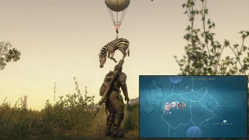 mgs5-местонахождение-зебры-африка
