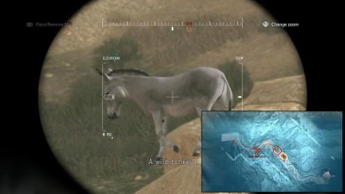 mgsv-дикие-животные-местонахождение-ослов
