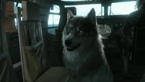 Вот в такого шикарного пса, превратиться DD.