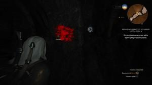 witcher3 где лежит броня волка