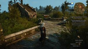 witcher3 лежит где броня волка