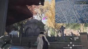 Аномалия находится на дереве в парке