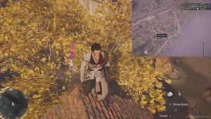 Спрыгните с края дома на дерево