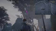 Забравшись на дерево, перепрыгните с одной развилки на другую