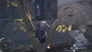 Спрыгните с дерева на крышу беседки