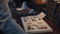 Все собранные Гербарии Иви аккуратно разместит между страницами этой книги