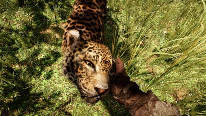 Far Cry Primal приручение Ягуара