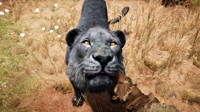 Far Cry Primal как приручить редкого Черного Льва