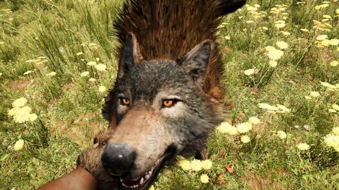Far Cry Primal приручить Волка