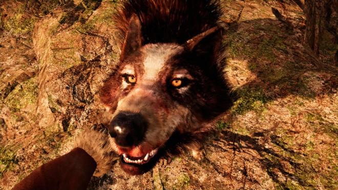 Far Cry Primal Как приручить редкого Полосатого Волка