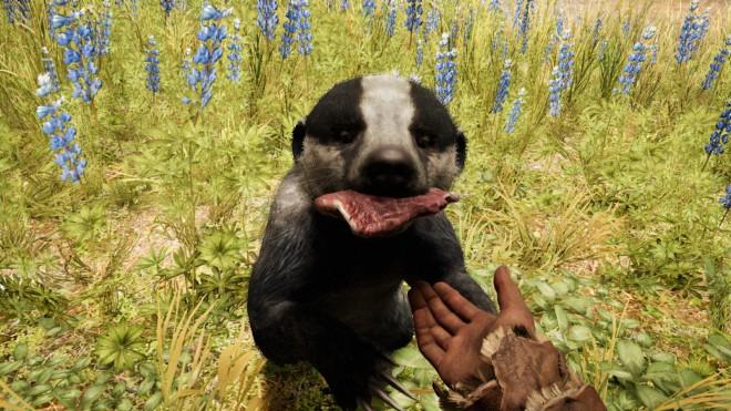 Far Cry Primal как приручить Барсука