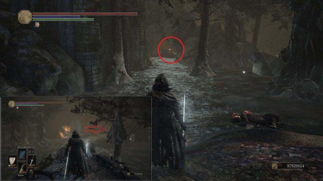 Свитки чар в Dark Souls Свиток Знатока