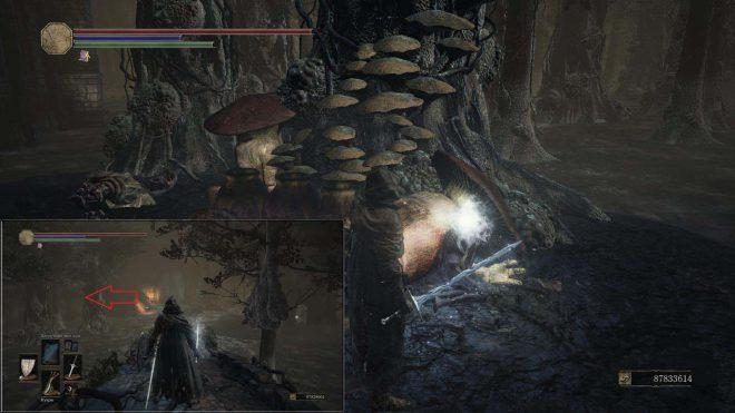 Dark Souls 3 Золотой свиток чар