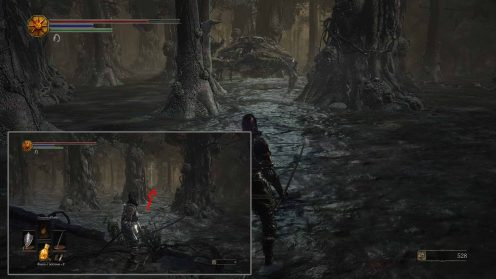 ds3 местонахождение Кольца медлящим драконом