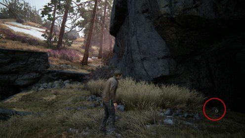 Бронзовый кабан сокровища в Ucharted 4 поиски
