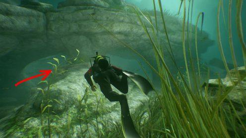 Uncharted 4 найти все сокровища в главе 3