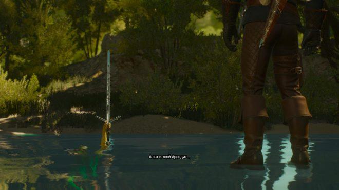 Ведьмак 3 владычица озера