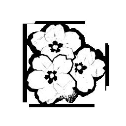 iconFavors_freshPrimroseBlossom