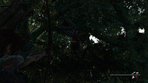 Shadow of the Tomb Raider взъерошенные перья как пройти испытание