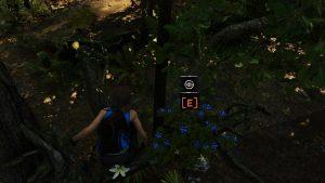 Shadow of the Tomb Raider испытание это цветочки гайд